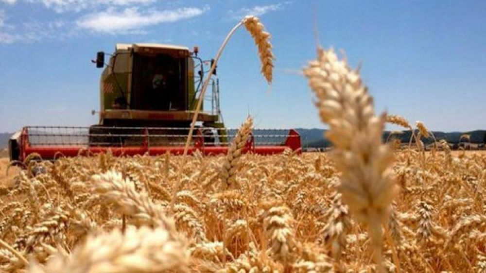 Expendedores rurales estiman que la porción más grande de la venta de gasoil será para las petroleras