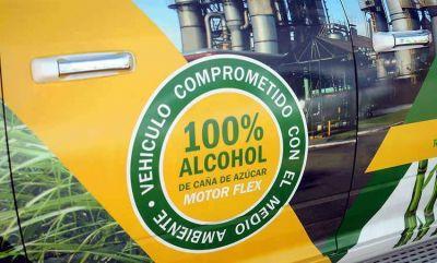 Biocombustibles: Lamentan la decisión del Gobierno de no elevar el corte obligatorio