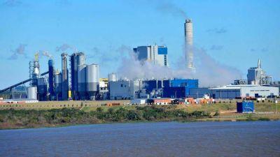 Uruguay avanza en la instalación de una nueva pastera