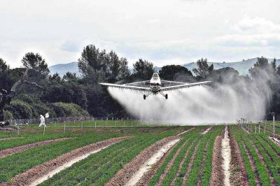Vidal suspendió la autorización para fumigar en zonas de riesgo