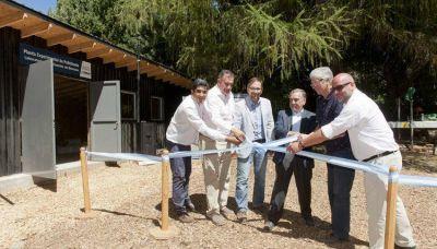 Logran avances en la producción de biocombustibles sólidos de base forestal en la Patagonia