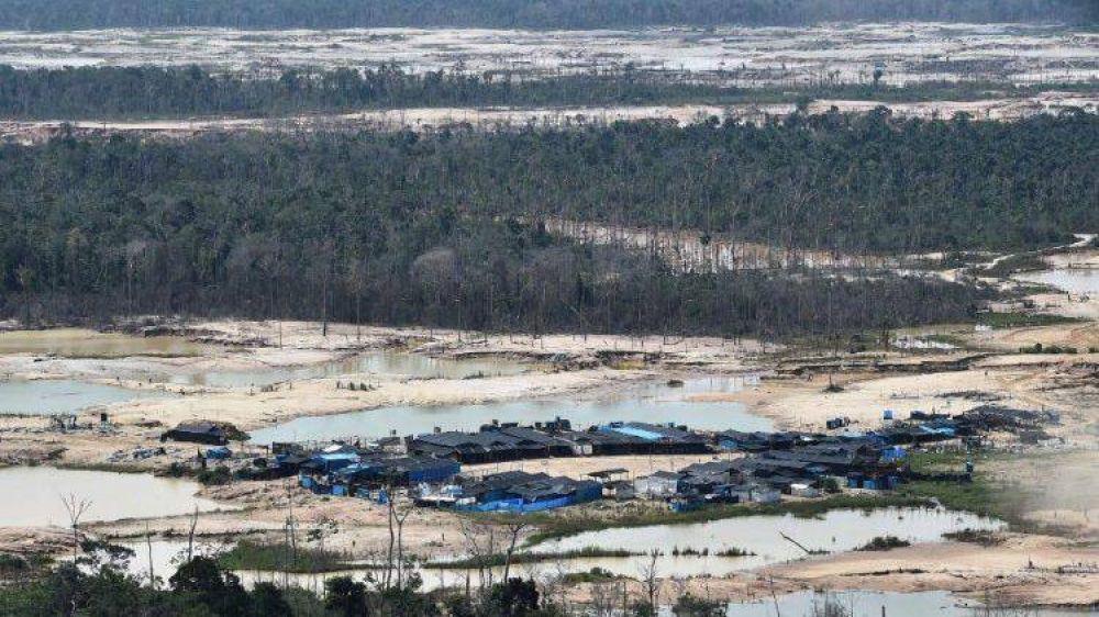 El Papa convoca el Sínodo para la Amazonía del 6 al 27 de octubre