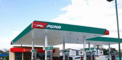 Tres nuevas marcas de naftas pelean el mercado local