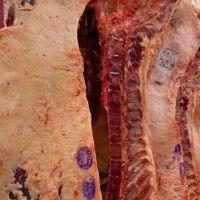 Controles de faena de la AFIP llegan a las carnicerías de barrio