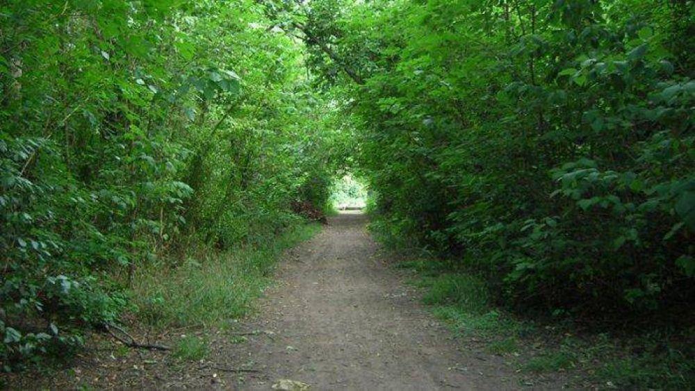 Reserva natural Santa Catalina: vecinos lograron compromiso municipal para su funcionamiento