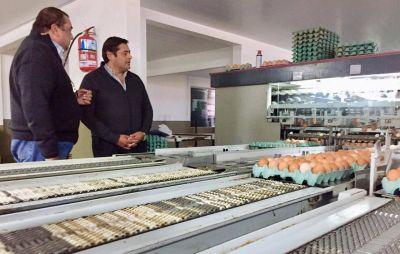 El pre candidato a intendente, Marcelo Sosa, visitó una granja avícola en General Piran