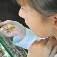 Obesidad infantil: quioscos escolares en la mira por la venta de alimentos poco saludables