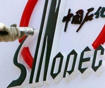 En Santa Cruz, Sinopec se comprometió a perforar 16 pozos y no superó los 10