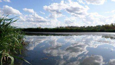 Clausuran obras ilegales de Gustavo Pierri que destruyeron humedales en reserva Laguna de Rocha