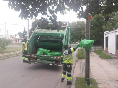 La clave, los recicladores de base