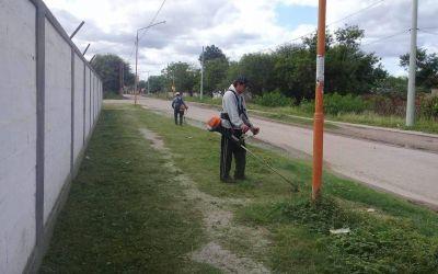 Erradican basurales y desmalezan instituciones educativas en Clodomira