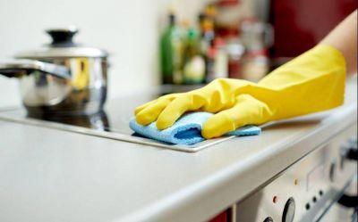 Día del Personal de Casas Particulares: este miércoles es no laborable para las empleadas domésticas