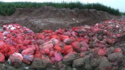 Jujuy: montañas de basura patógena a cielo abierto y sin tratamiento en El Pongo