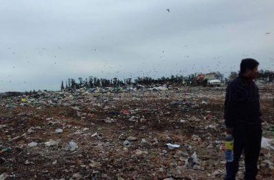 En marzo, el Ceamse descargó 1500 toneladas de basura por día
