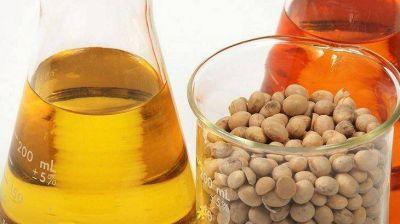 Biocombustibles: productores en riesgo acusan al Gobierno de no respetar la seguridad jurídica