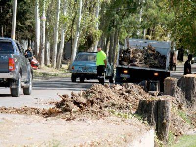 Obras en Luján: vecinos de calle Boedo piden celeridad