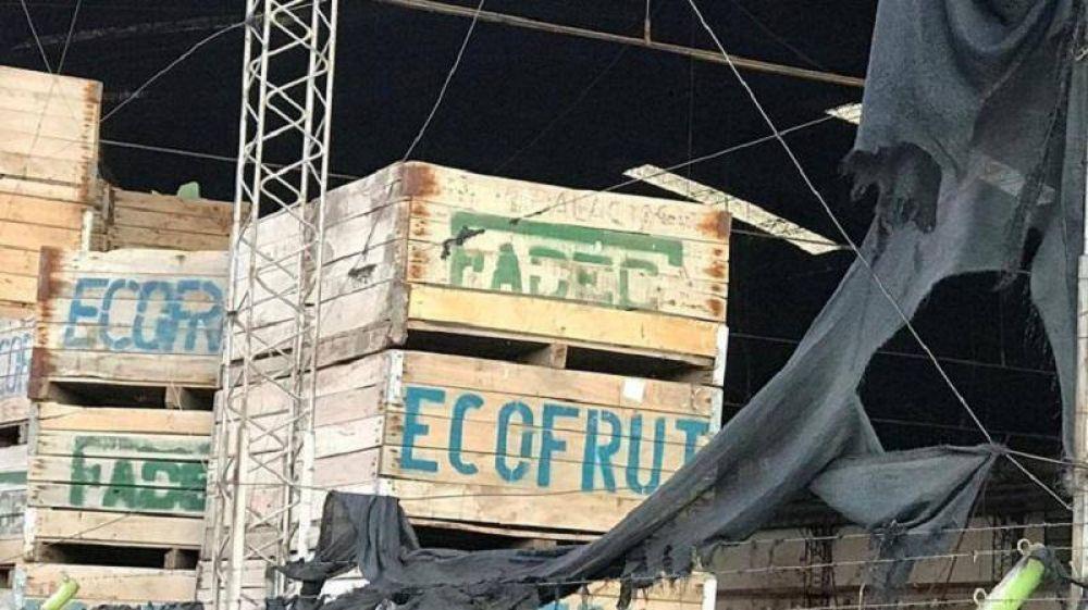 Ecofrut se sumó a la lista de firmas en crisis y pidió entrar en concurso de acreedores