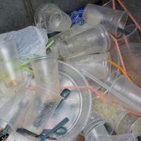 """""""Esto abrirá la puerta a que la ciudad use materiales biodegradables"""""""