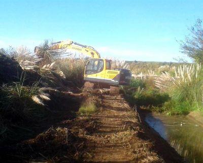 Limpieza del arroyo de Pontevedras