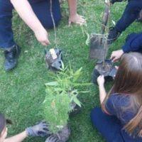 Los jóvenes de Chascomús comenzaron su Misión Ambiental