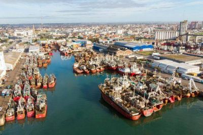 Falta de espacio operativo en Mar del Plata genera riesgos de perder trabajo y suma costos