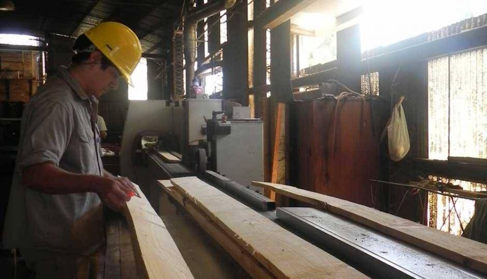 Más despidos y sigue la caída de la industria maderera