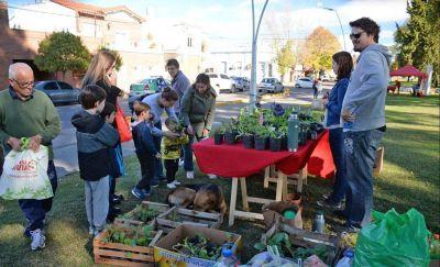 EcoCanje: un plantín por residuos inorgánicos