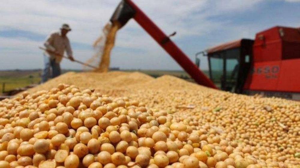 La AFIP confiscó casi 5.000 toneladas de granos no declarados por $17 millones