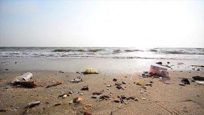 El microplástico, el enemigo de mares y océanos que pone en riesgo la fauna marina