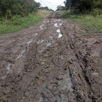 Vecinos de Campo Rossi reclaman ripio y agua potable