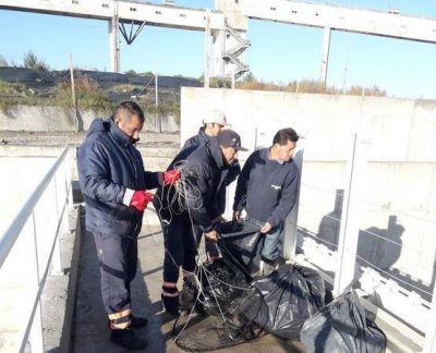 """Desagüe Pluvial Arroyo del Barco: La reja de contención y barrera flotante anduvo de""""10″"""