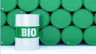 Legisladores proponen extender el Plan Biocombustibles hasta 2030 y elevar progresivamente el corte