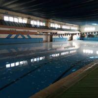 Por los tarifazos, alertan sobre posibles cierres de piletas en Mar del Plata