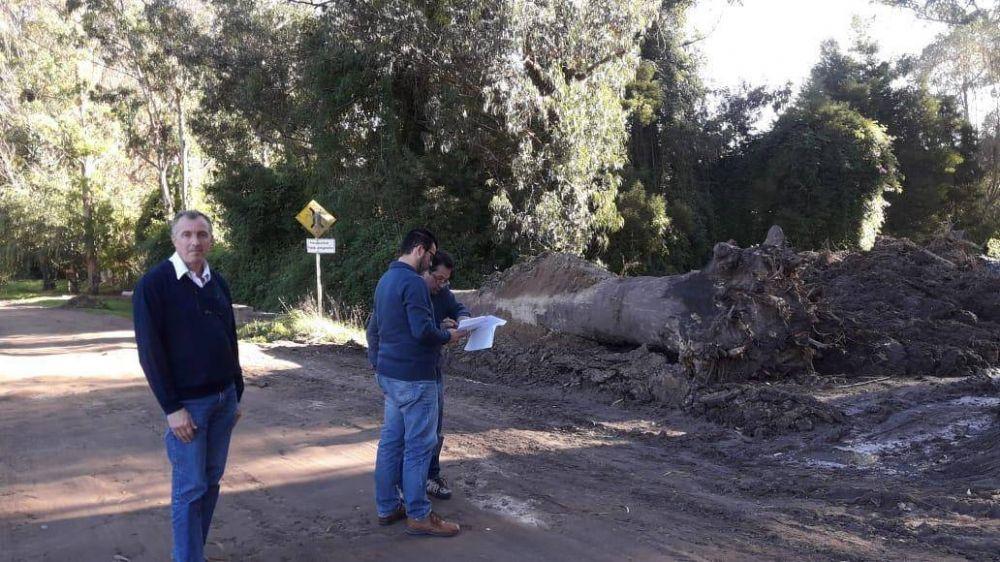 Bosque Peralta Ramos: analizan proyecto de extensión de la red cloacal
