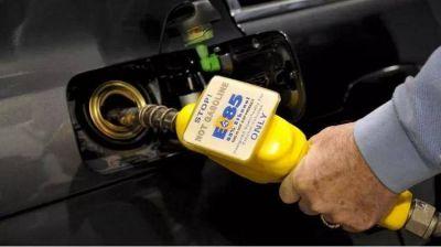 En el Congreso proponen elevar al 30 por ciento la mezcla de biodiesel en el gasoil y 28 de bioetanol en las naftas