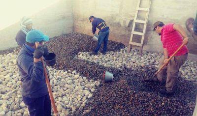 Importantes trabajos de IPALaR para mejorar la Potabilización del Agua en Aminga