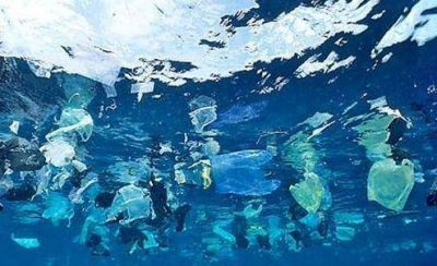 Investigadores del Inidep detectan microplásticos en el Mar Argentino