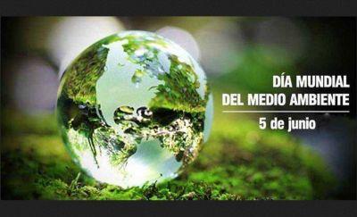 Día mundial del Medio Ambiente: ¿por qué se celebra?