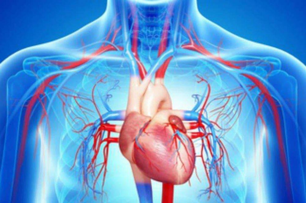 Insuficiencia cardíaca: la definen como la epidemia cardiovascular del siglo XXI