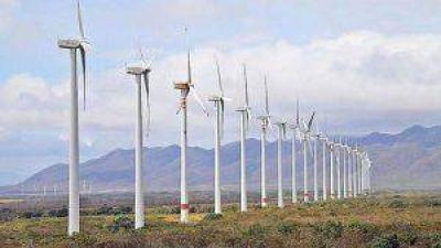 Inauguran en Santa Cruz el parque eólico más grande del país