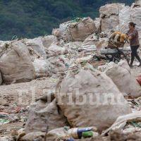 Separemos Juntos: el programa para reciclar los residuos sigue estancado