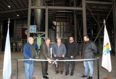 La Cooperativa Agropecuaria de Tandil apuesta al futuro con su nueva planta de producción