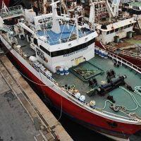 El Consejo Federal Pesquero le otorgó al Grupo Solimeno un permiso irregular