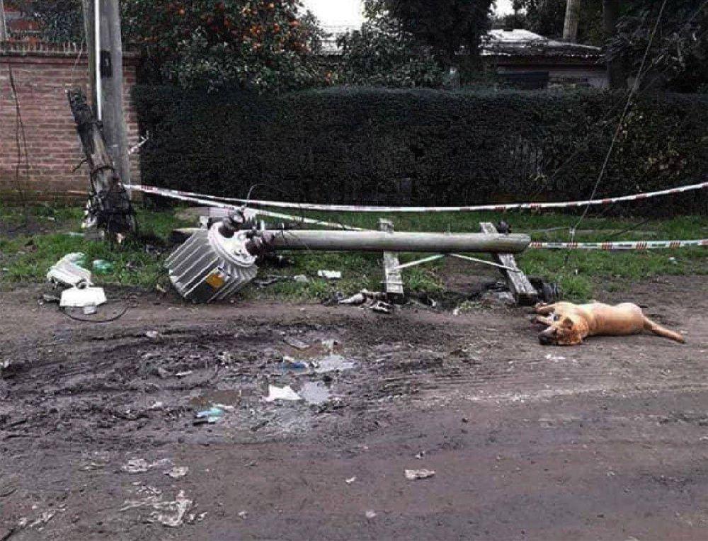 Almirante Brown: explotó un transformador de Edesur y electrocutó a un perro
