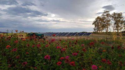 Solárica instala un nuevo parque solarLa firma instalará otro parque solar en la provincia de San Juan