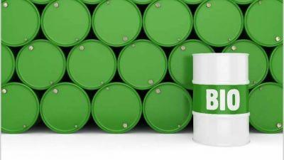 Afirman que el Gobierno ve a los biocombustibles como «un gran problema» para la sociedad