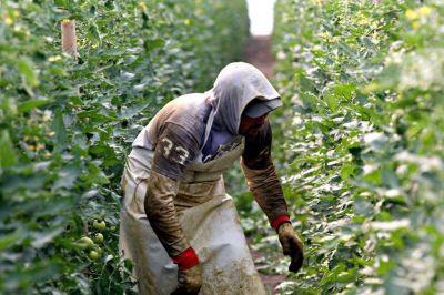 Imponen nuevas obligaciones para el uso de los agroquímicos en el territorio bonaerense