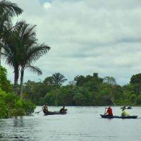 Obispo en Brasil critica Instrumentum laboris del Sínodo: La Amazonía ya no es católica