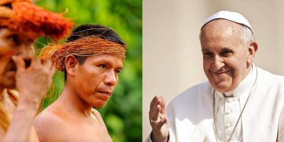 ¿Por qué cuidar la Amazonía?  Las razones contundentes del Papa Francisco