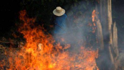 CELAM ante incendios de bosques: levantamos la voz por Amazonas